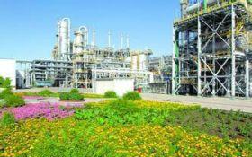 厂区绿化养护